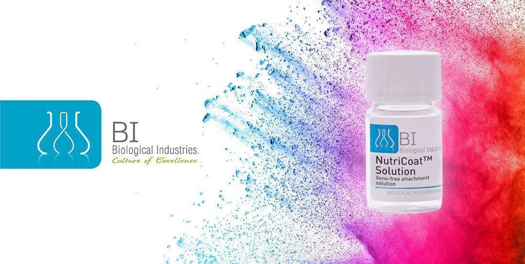 Nový produkt NutriCoat určený pro adhezi lidských mezenchymálních kmenových buněk